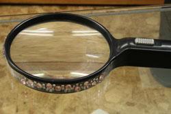 キラキラ虫眼鏡