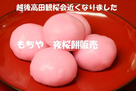 高田夜桜餅