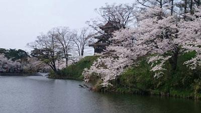 高田公園6
